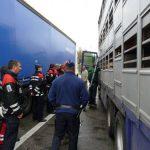 training_bel_police2009