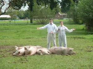 pig_course2