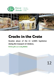 cracks_in_the_crate