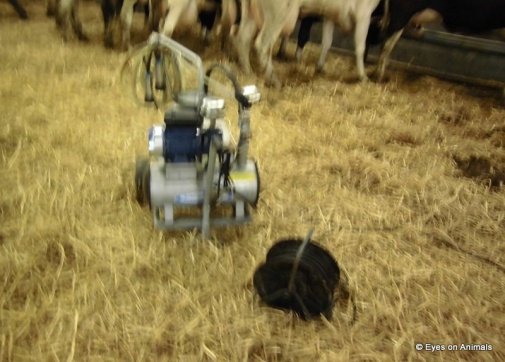 14.06.2012_Leeuwarden_milking_machine