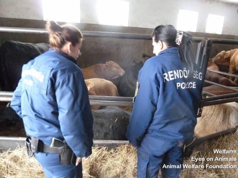 05.12.2012_HU_Szeged_police_training_at_Romanian_border___77