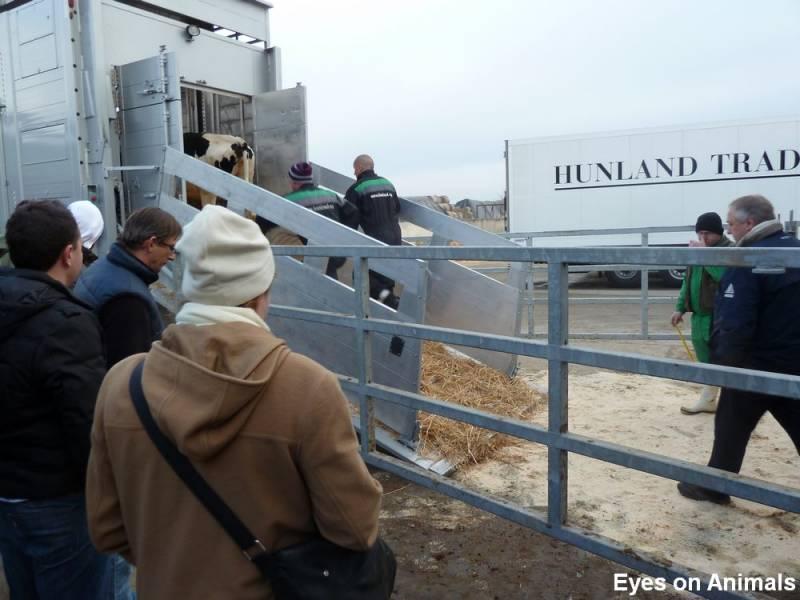 03.01.2012_Hunland_Training__52