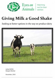 Giving Milk a good Shake