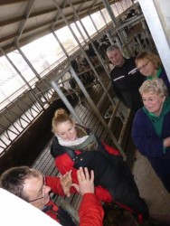 27.01.2015_NL_VetVice_dairyfarm_tours  (5)