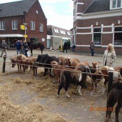 Paardenmarkt Elst