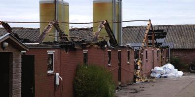 10.07.2016 Begehung einer niedergebrannten Geflügelfarm, NL
