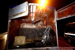 Small livestock truck in poor condition