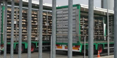 12.01.2017 Dutch poultry transporter and organizer fined