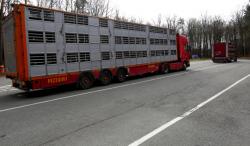 Pezzaioli truck