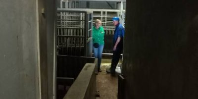 01.05.2017 Unannounced visits to slaughterhouses East Netherlands