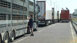 Inspecting trucks at the border