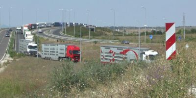 14.08.2017 Tiertransportkontrollen an der BG-TR Grenze, Kapitan Andreevo