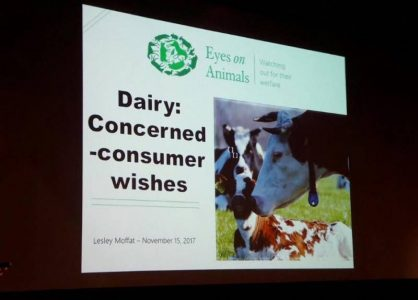 15.11.2017 Eyes on Animals ist Gastredner auf der Lely-Konferenz für Milchbauern aus der ganzen Welt