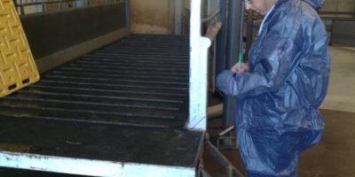08.05.2018 Visit to livestock-export center Busser (NL)
