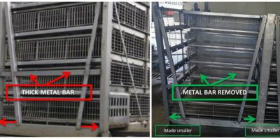10.07.2018 Storteboom improves poultry containers to reduce injuries