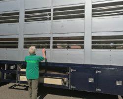 Inspection of transporter