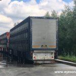 Trucks at Westfort