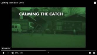 Calming the catch