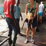 Inspection and measures taken in slaughterhouse Ghana