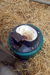 Fresh straw and a small spoon-water basin
